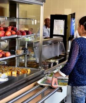 Российским ученикам запретят носить с собой в школу еду из дома