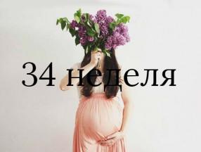 34_nedelya_beremennosti