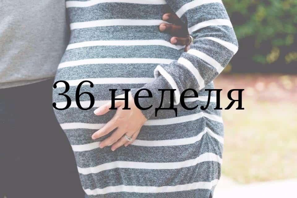 Тридцать шестая неделя беременности: симптомы, ощущения, обследование и возможные осложнения