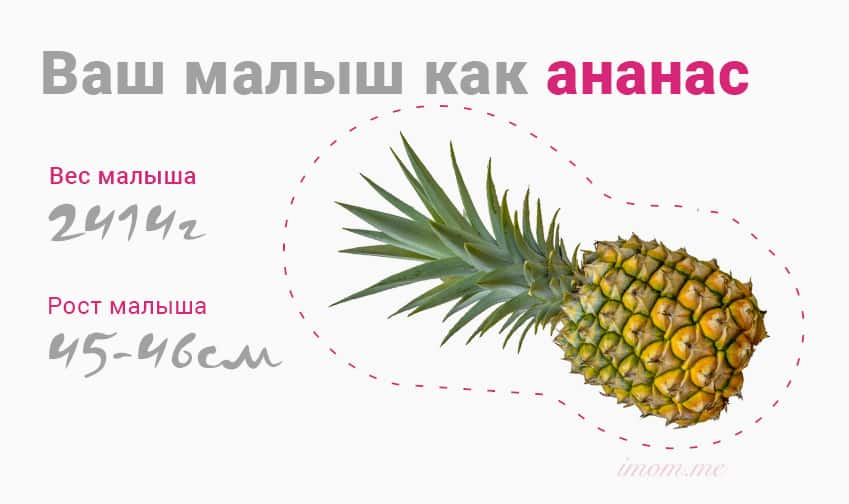 vash_malish_kak
