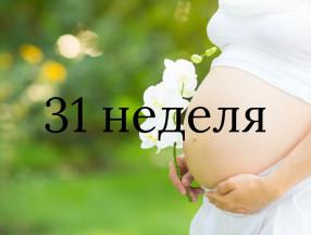 31_nedelya_beremennosti