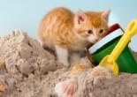 «Железная дорога». Игра с песком для детей до 3 лет