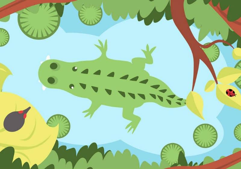 pravila_igri_krokodil_dlya_detei