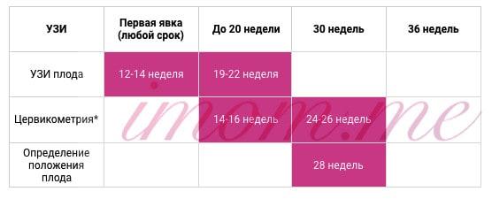 uzi_pri_beremennosti
