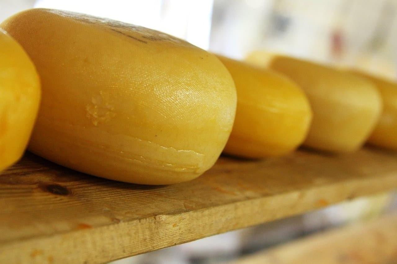 продукты богатые кальцием сыр